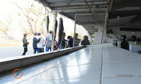 Reclamo de pescadores en Rosario