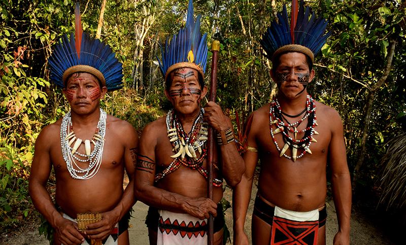 Amenaza de genocidio para pueblos indígenas de Brasil, Covid podría ser la puntilla: expertos