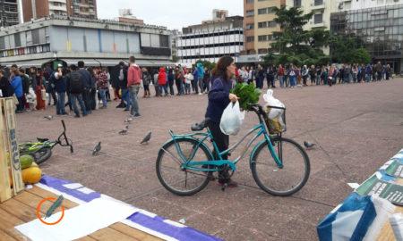 Feria Ctep