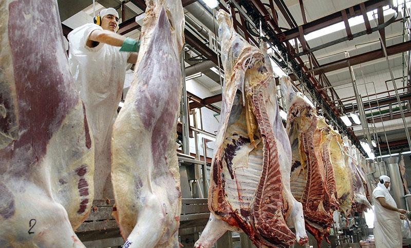Aumentaron los envíos de la carne vacuna al exterior