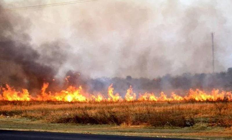 Los incendios afectan las líneas rurales de la EPE