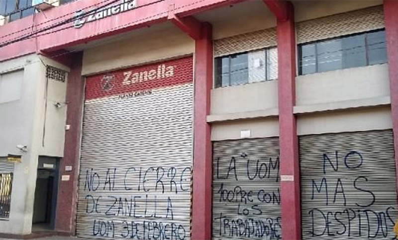 Resultado de imagen para planta zanella