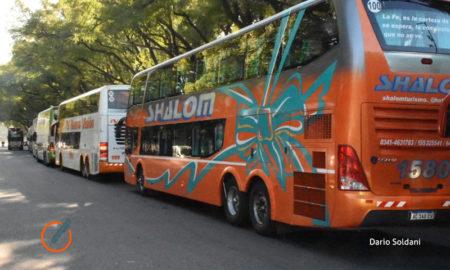 Transportistas de turismo